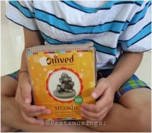 Omved Shaadu Ganesha Kit