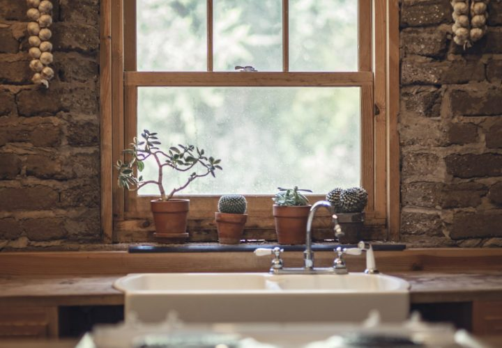 7 Ways to keep Bugs Away from your Home this Monsoon